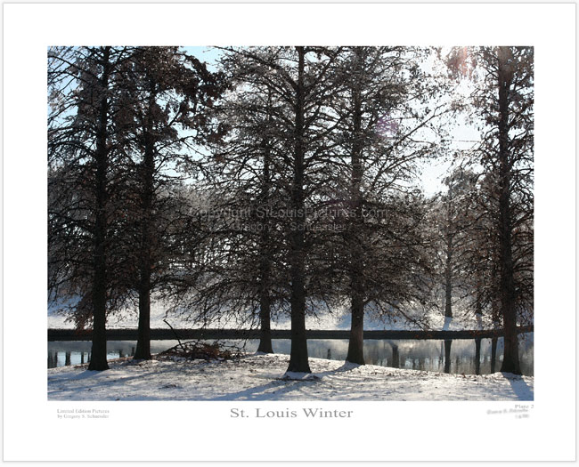St. Louis Winter - Plate 2